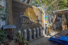 Dive Timor