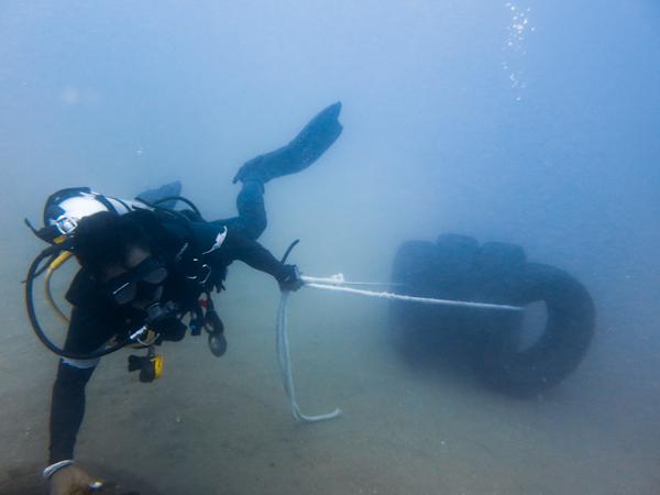 Roda-Reef4