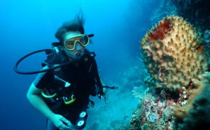 East Timor reef