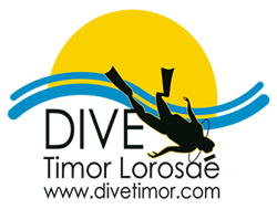 Dive Timor Lorasae