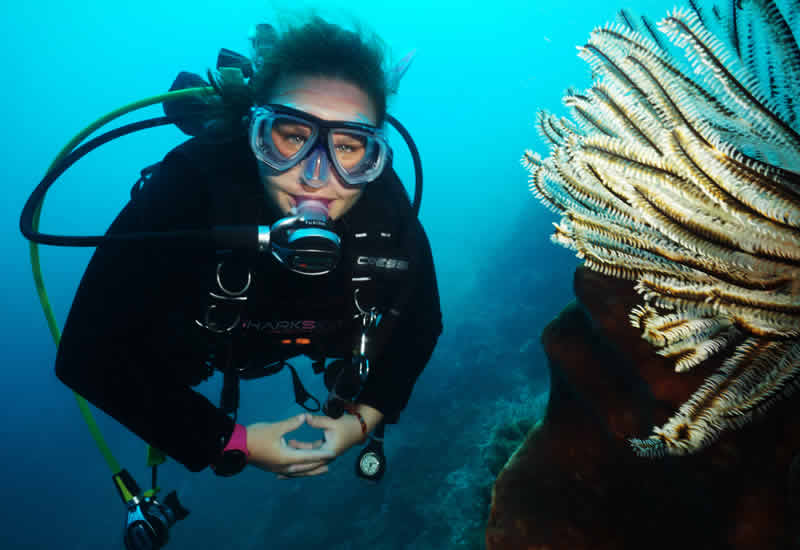 PADI Divemaster course Timor Leste special offer