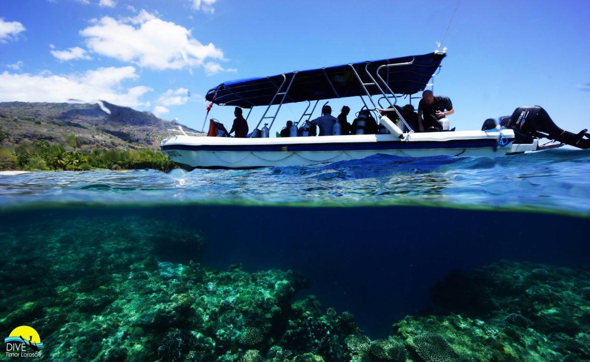 Atauro twin boat Dive Promo