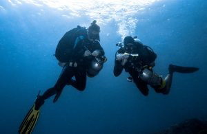 Diving black rock timor leste