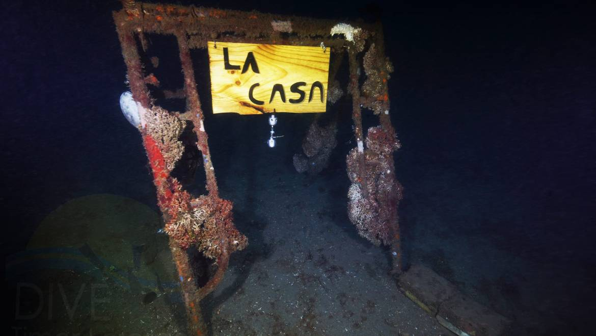 La Casa November 2017 Update – Night Dive