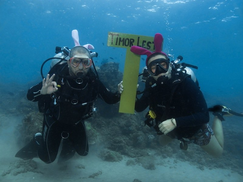 Dive Around the World for World Ocean's Day!