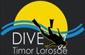 dtl-gray-logo3-80