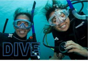 Special Offers dive november